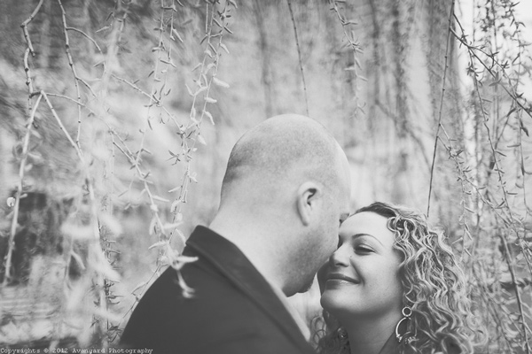 Toronto Harbourfront Engagement Pictures